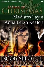 Conquering Connie: Incognito, Book 8 by Madison Layle